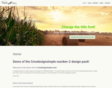 CMS Design Simple - Cmsdesignsimple-number-2